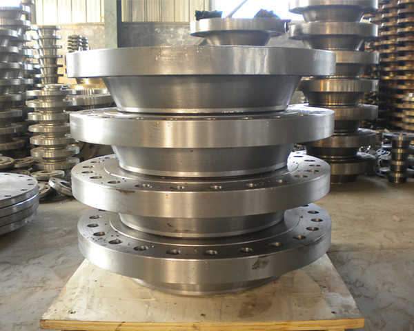 ANSI Ss304 Ss316 Forged Stainless Steel Threaded Flanges